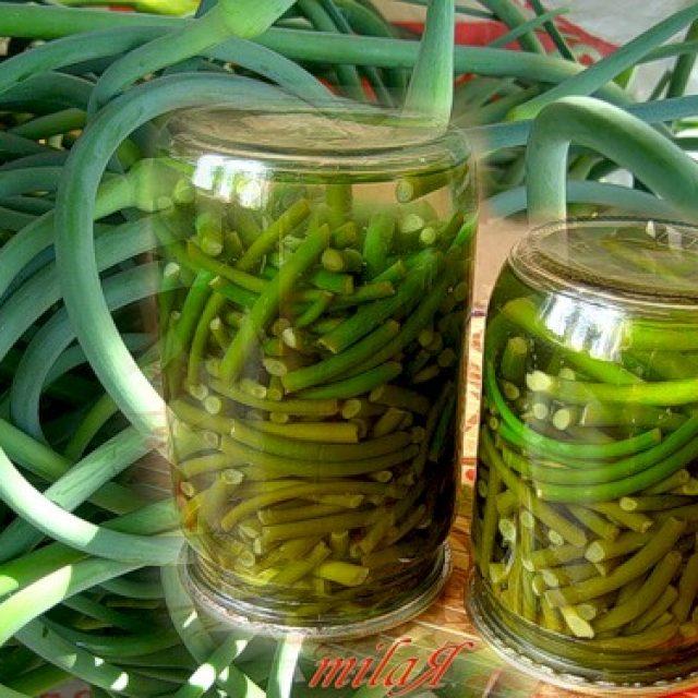 Маринованные стрелки чеснока - вкусные рецепты необычной пикантной закуски