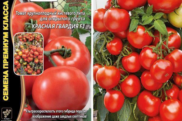 Описание сорта томата Красная гвардия, рекомендации по выращиванию и уходу