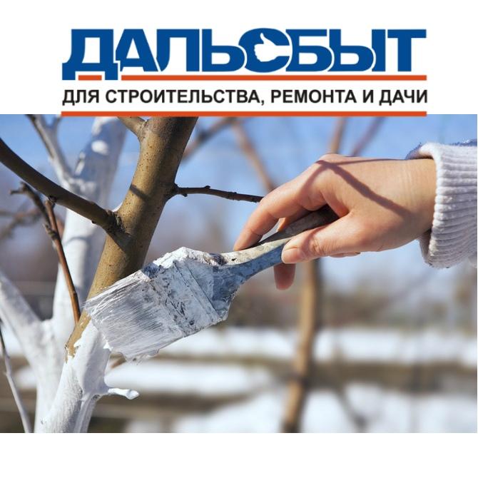 Покраска (побелка) деревьев осенью, дезинфекция ствола