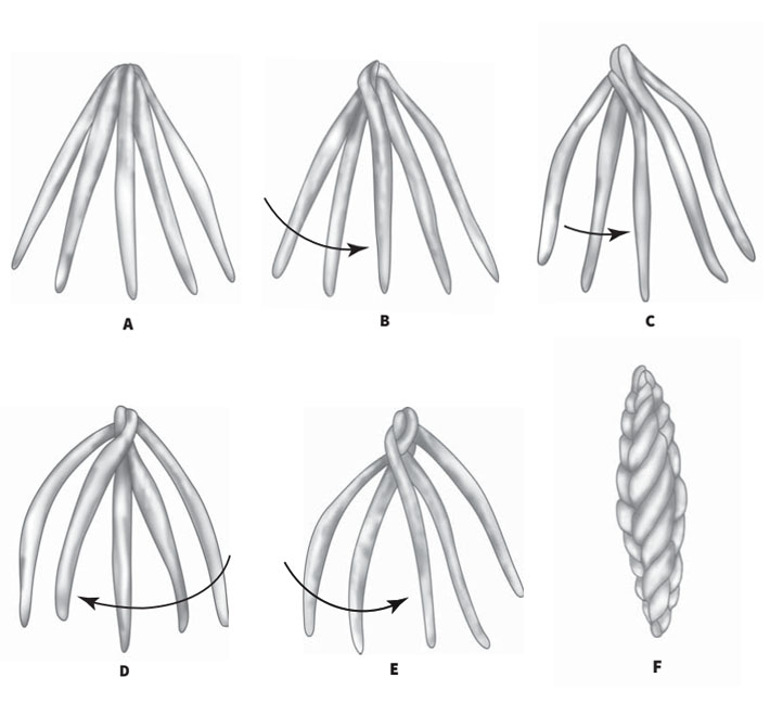 Подробно и пошагово с фото:как плести косы из чеснока?