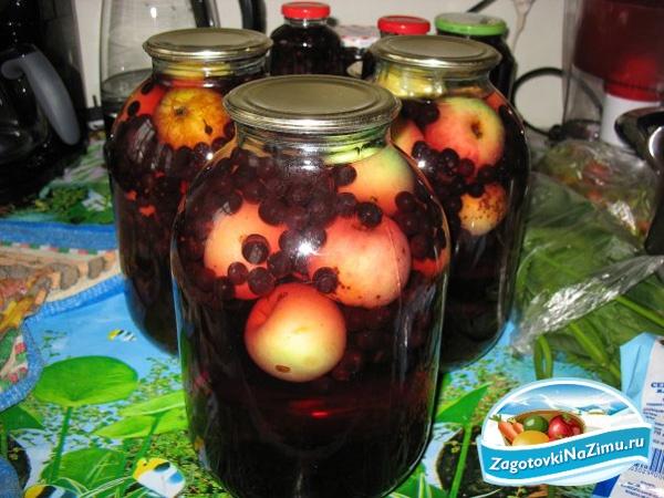 Компот из черноплодки с яблоками на зиму – минимум хлопот, максимум вкуса. варим «алтайский» компот: яблоки с черноплодной рябиной - автор екатерина данилова - журнал женское мнение