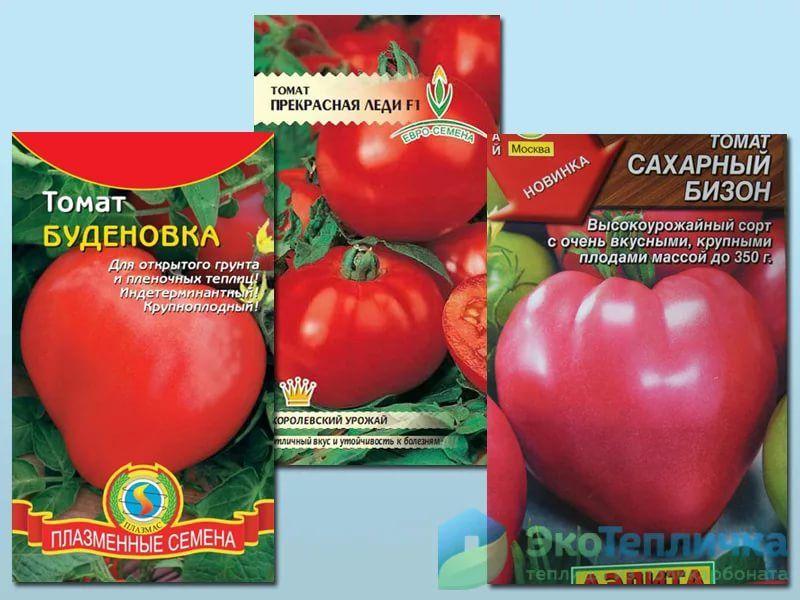 Топ 35 самых высокоурожайных сортов помидоров