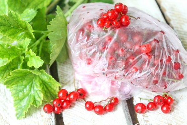 Как приготовить на зиму черную смородину, чтобы сохранить витамины