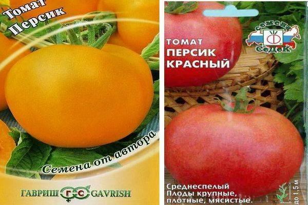 Описание необычного томата Персик и особенности выращивания сорта