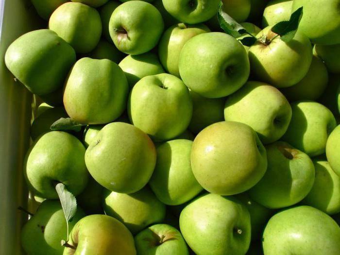 Яблоня мутсу, описание сорта с прекрасным вкусом