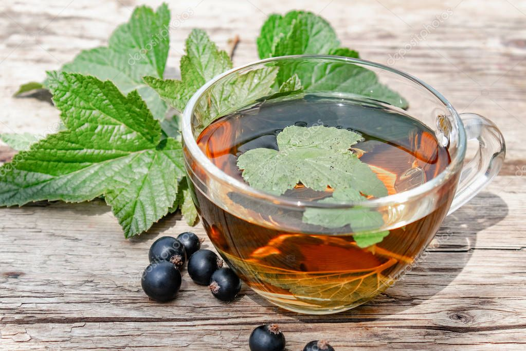 Чай из листьев смородины: лечебные свойства, противопоказания, лучшие рецепты