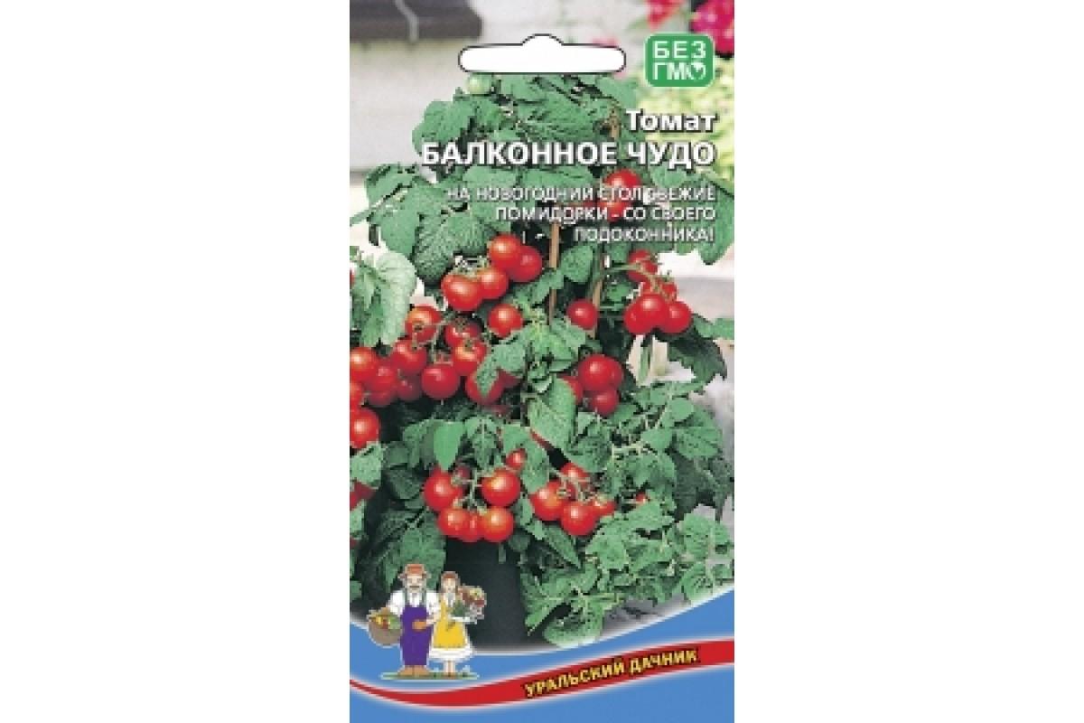 Огурцы балконное чудо f1: отзывы, описание сорта, выращивание и урожайность
