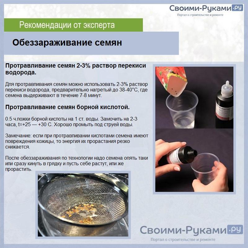 Замачивание семян перед посадкой: выбор раствора, виды препаратов, сроки и рекомендации