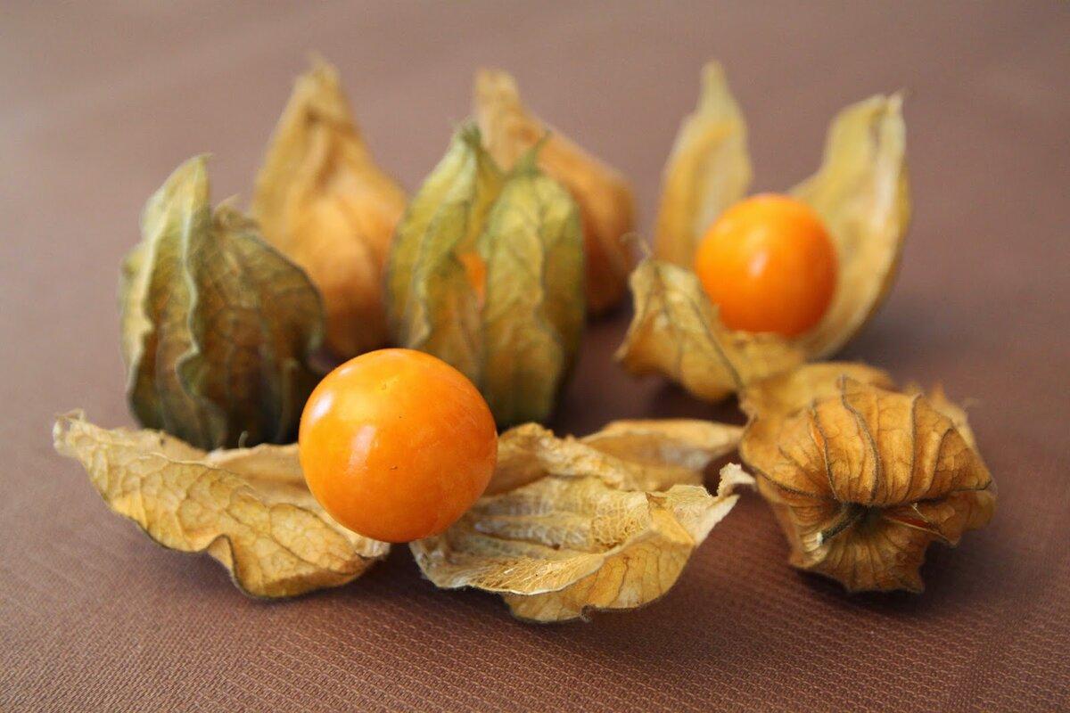 Блюда из физалиса овощного рецепт на зиму - простые пошаговые рецепты с фотографиями