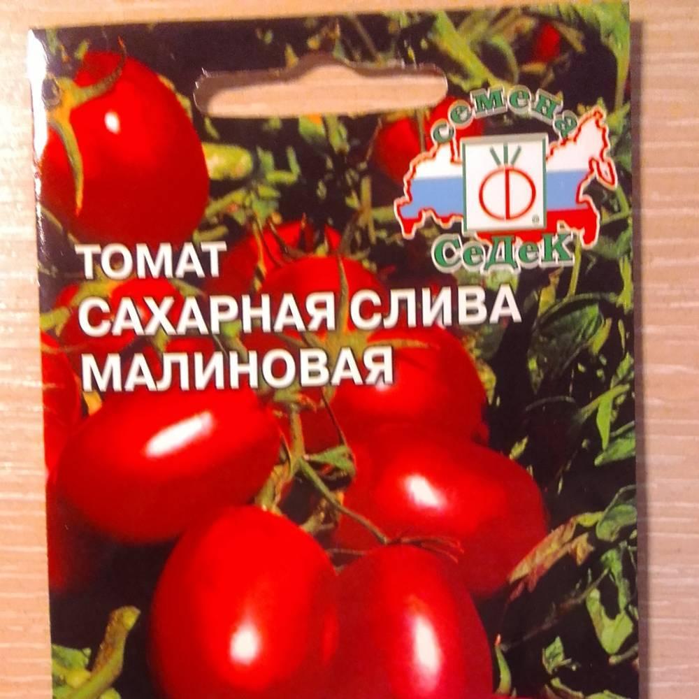 Описание сорта томата сахарная слива малиновая, его уход