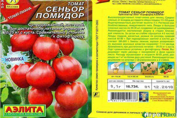 Описание раннего томата Синьор помидор и агротехнические характеристики растения