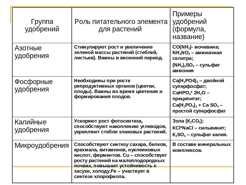 Минеральные удобрения: виды, как применять, календарь подкормок