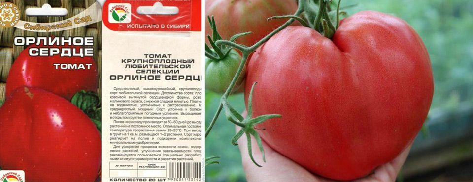 Томат любящее сердце красное — описание сорта, урожайность, фото и отзывы садоводов