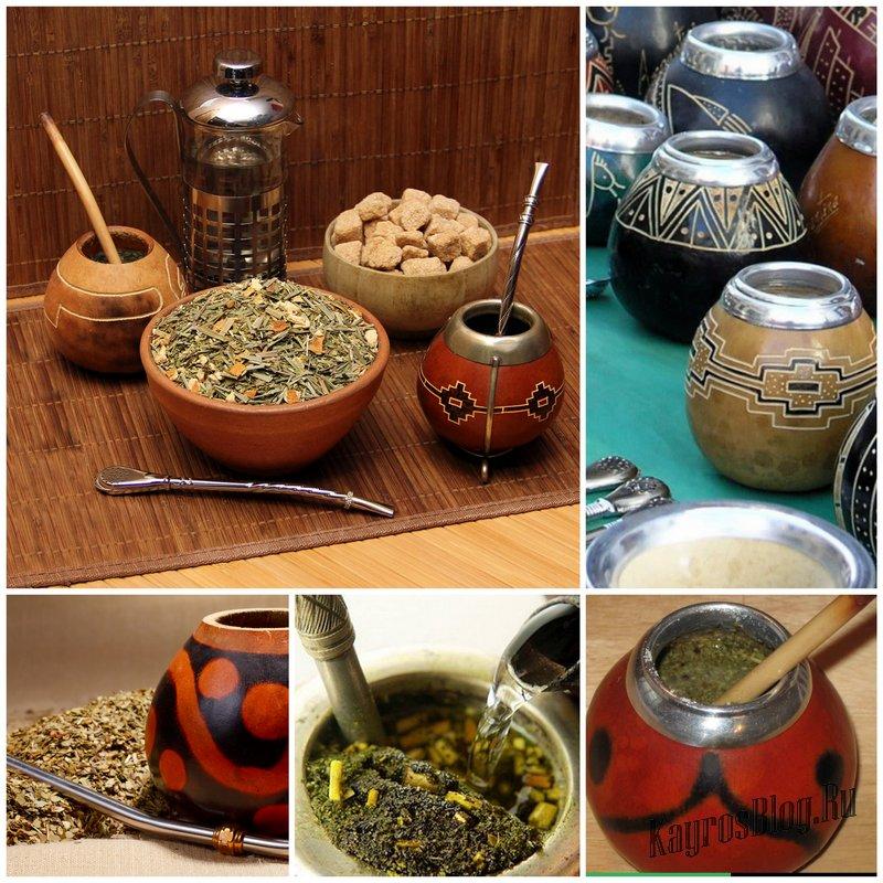 Чай йерба мате — что это такое, как правильно заваривать и пить