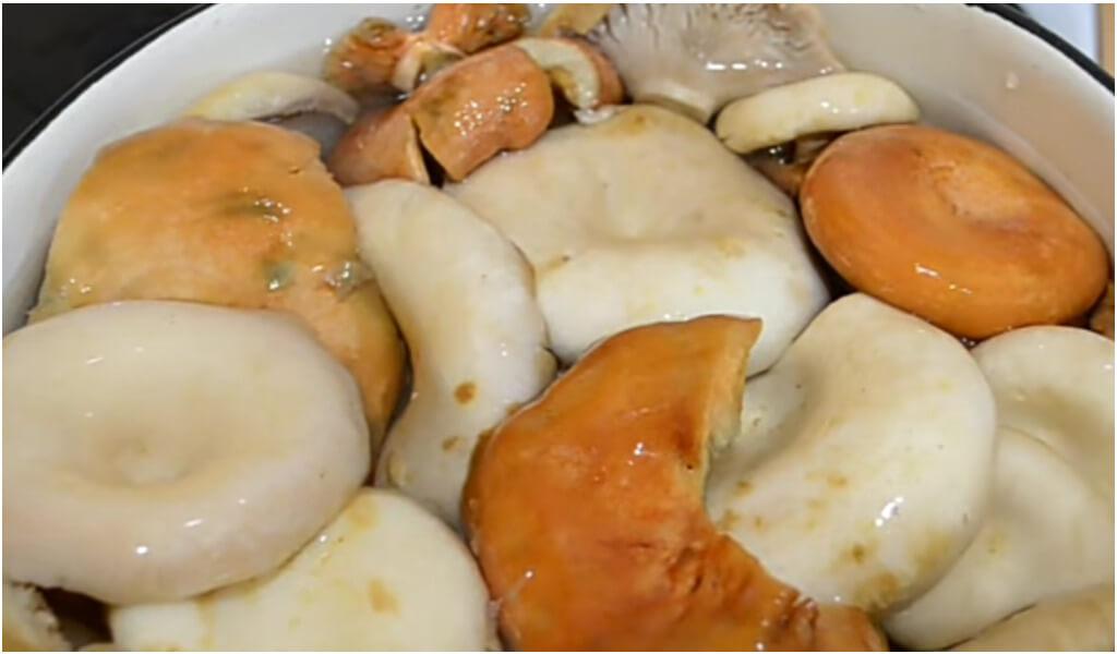 Можно ли замораживать соленые грибы   заготовки на зиму
