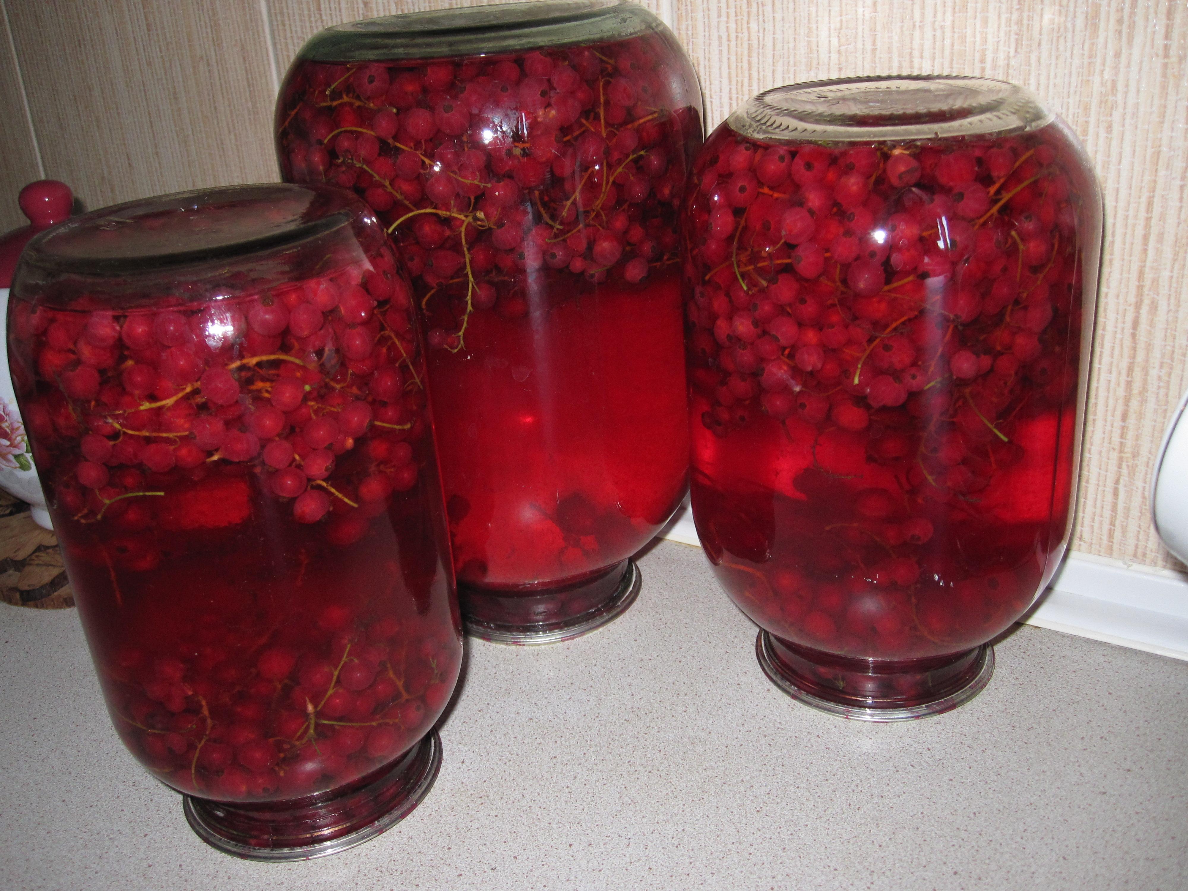 Рецепты заготовок из красной смородины на зиму: что сделать из ягод, можно ли быстро приготовить компот, делают ли из нее варенье без сахара