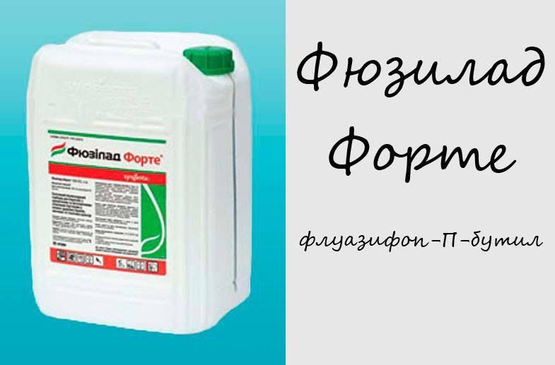 Блогир-3® (blogir-3)