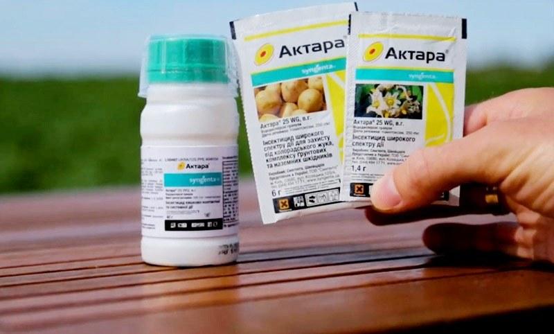 Особенности применения препарата актара для защиты огурцов от вредителей