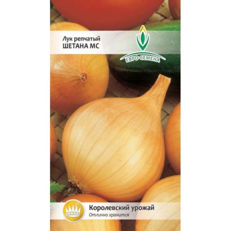 Лук шетана: описание сорта, фото, отзывы, посадка и уход, урожайность, достоинства и недостатки и особенности выращивания