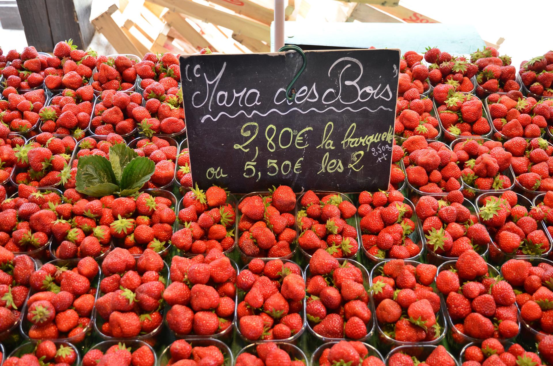 Клубника мара де буа: описание ремонтантного сорта, выращивание и размножение