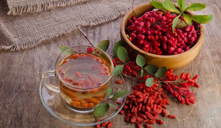 Чем полезен барбарис: его лечебные свойства и противопоказания