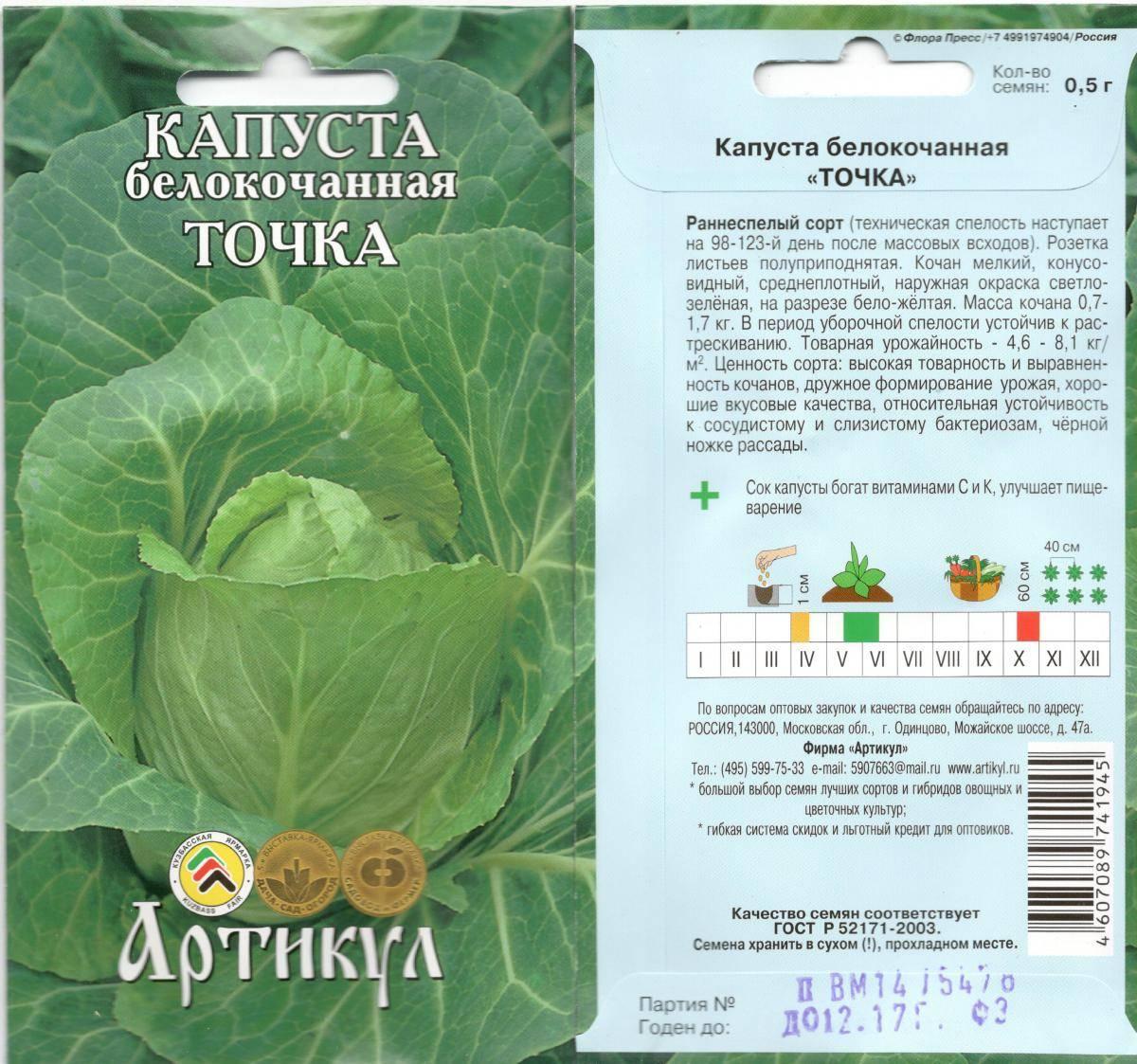 Лучшие сорта поздней капусты для длительного хранения, когда ее сажать на рассаду, фото, отзывы