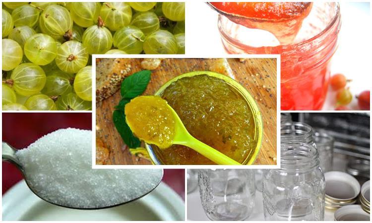 Крыжовник с сахаром на зиму без варки: 7 простых рецептов приготовления