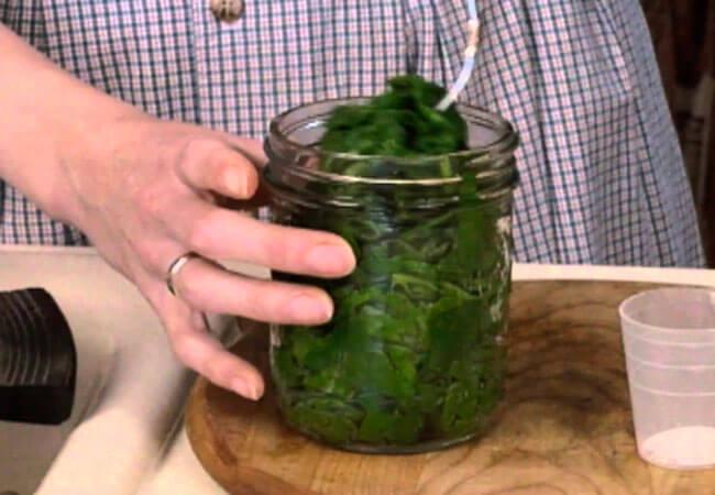 Заморозить шпинат: как это сделать правильно, и какие методы заготовки лучше подходят для зимнего хранения?