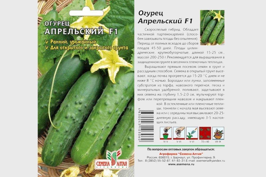 Сорта огурцов для подмосковья | вырасти сад!