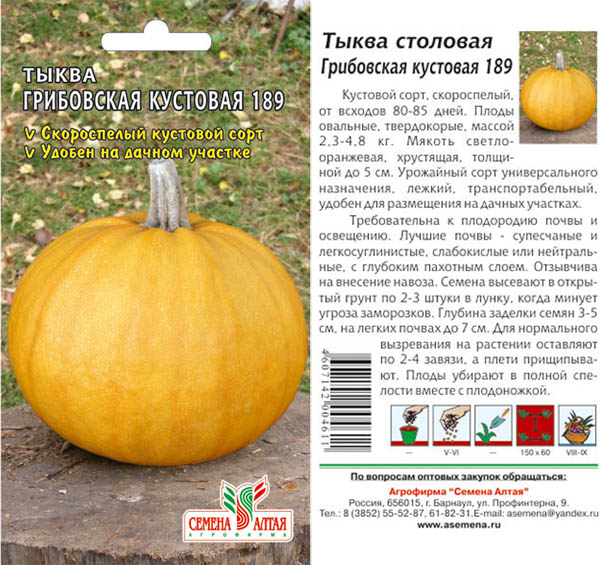 Самые сладкие сорта тыквы 2020: фото и описание, отзывы по содержанию сахара для средней полосы, сибири и подмосковья