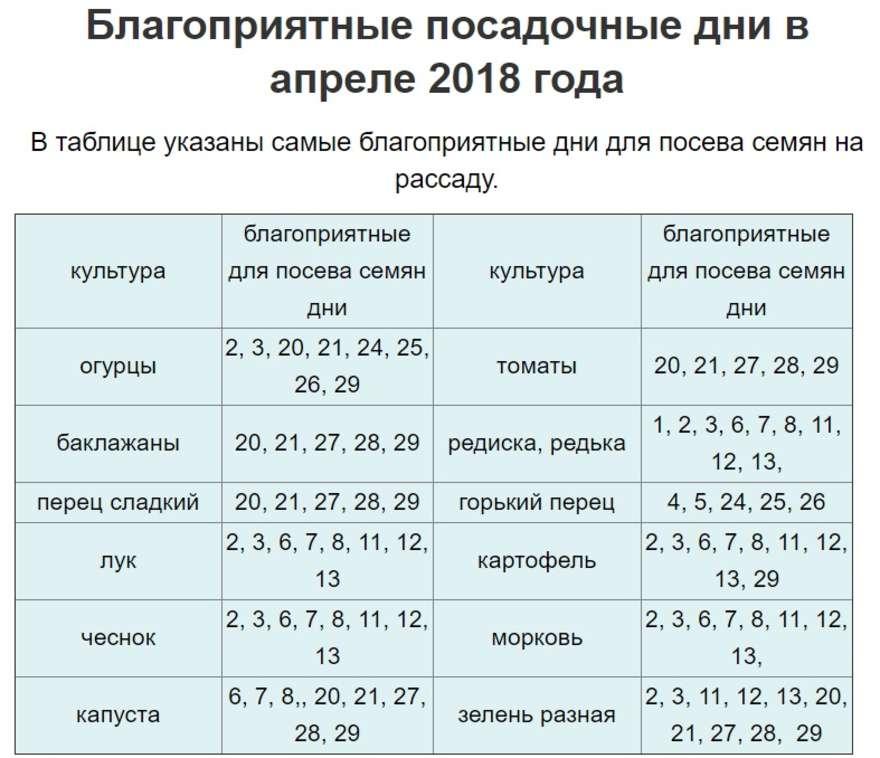 Посадка моркови: последний срок посева в открытый грунт в средней полосе и других местах, нюансы от а до я, в какие дни и можно ли летом в июне, когда лучше всего? русский фермер