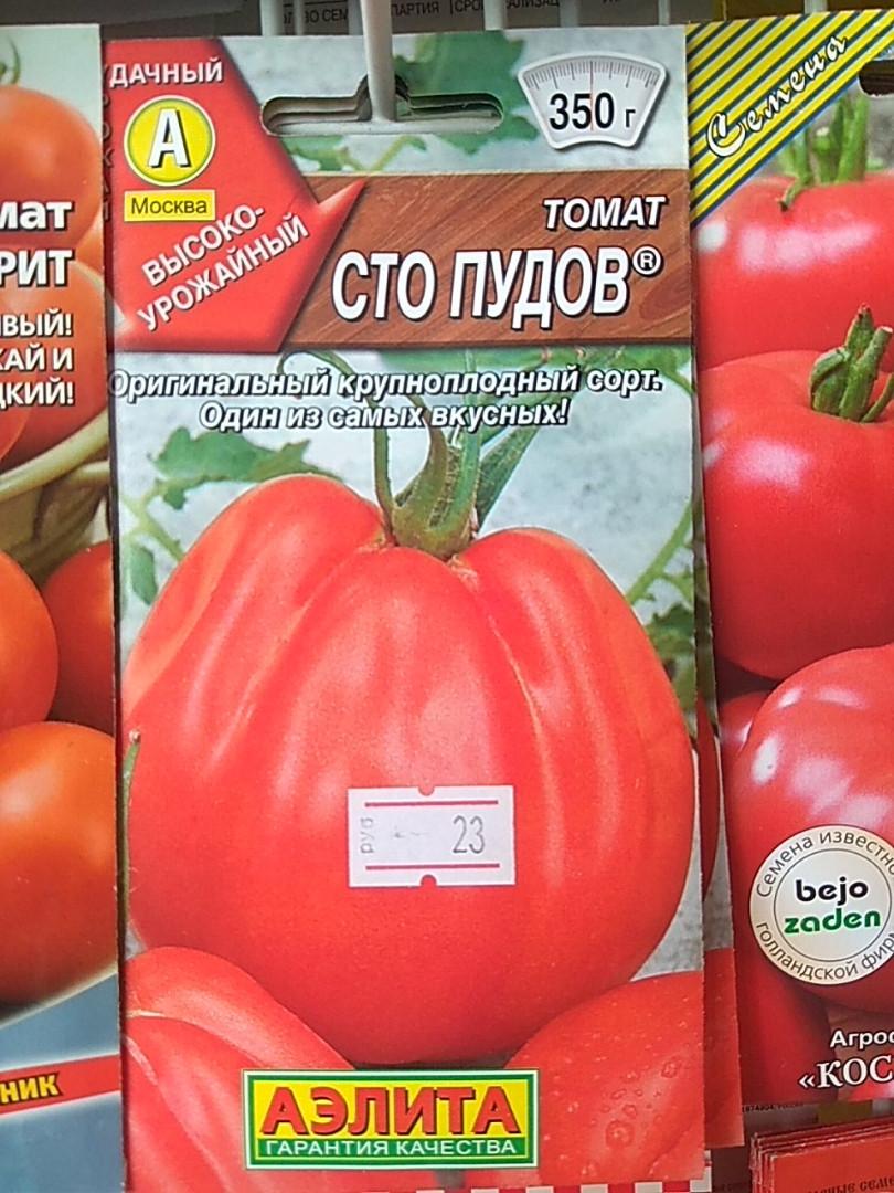 Томат сто пудов: описание сорта, отзывы, фото, урожайность | tomatland.ru