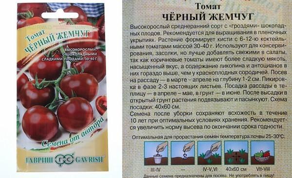Описание крупноплодного, раннеспелого томата Стрега и особенности выращивания