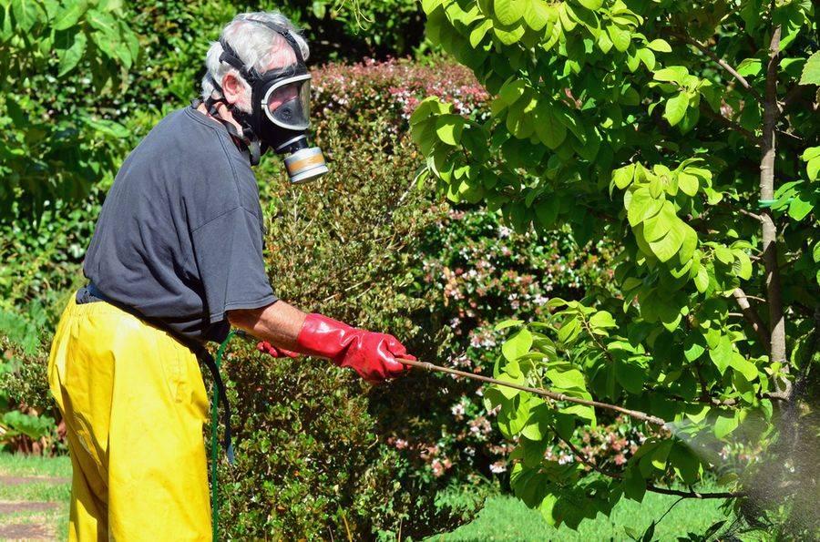 Химическая и биологическая защита растений