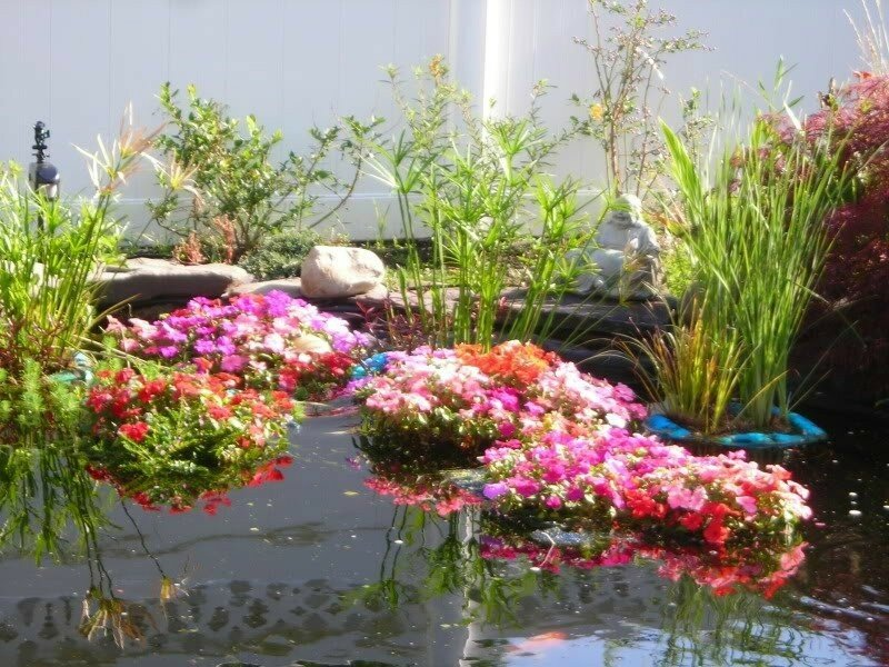 Самодельные садовые клумбы: их виды, необходимые материалы, подбор растений и цветов
