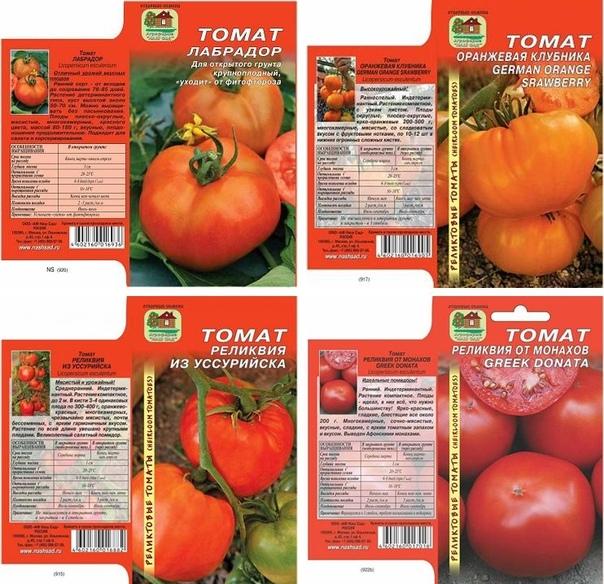 Описание сорта томата Лабрадор, его характеристика и урожайность