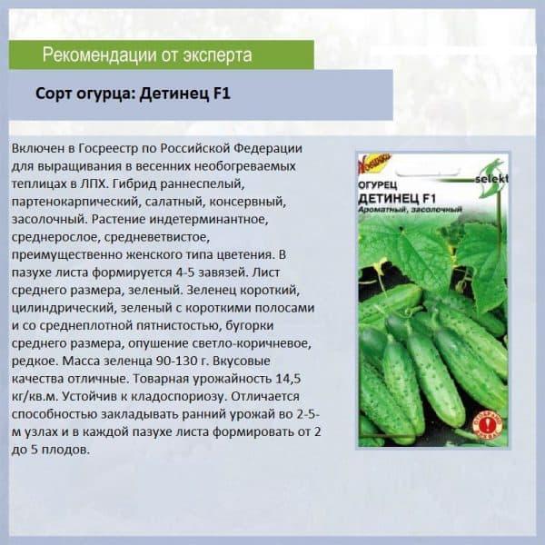 Рейтинг урожайных гибридов и сортов огурцов