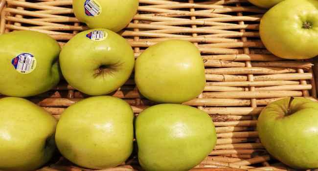 Зимняя яблоня голд раш