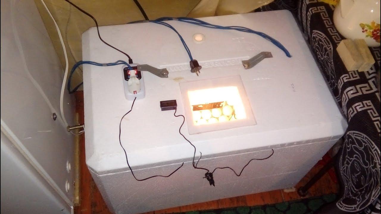 Как сделать инкубатор своими руками в домашних условиях для яиц - фото, видео