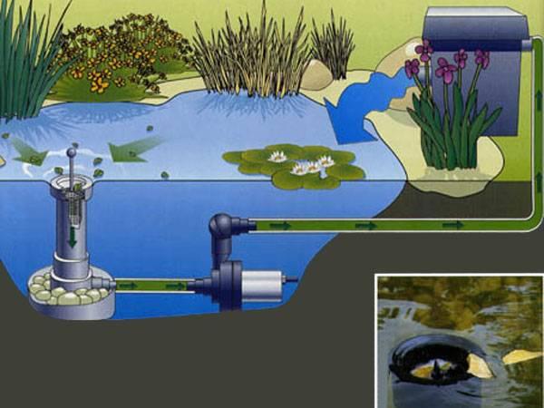 Как сохранить воду в бассейне в чистоте и какие химию для бассейна использовать!!!