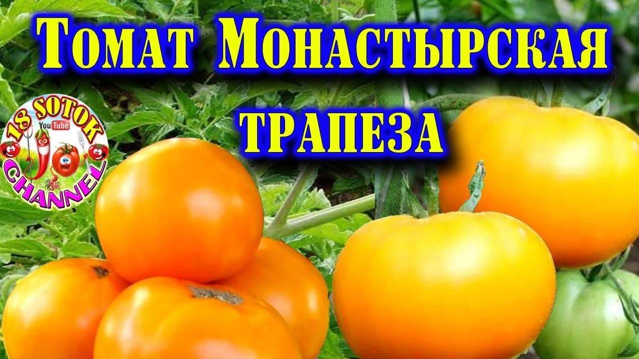 Томат первоклашка: характеристика и описание сорта, урожайность с фото
