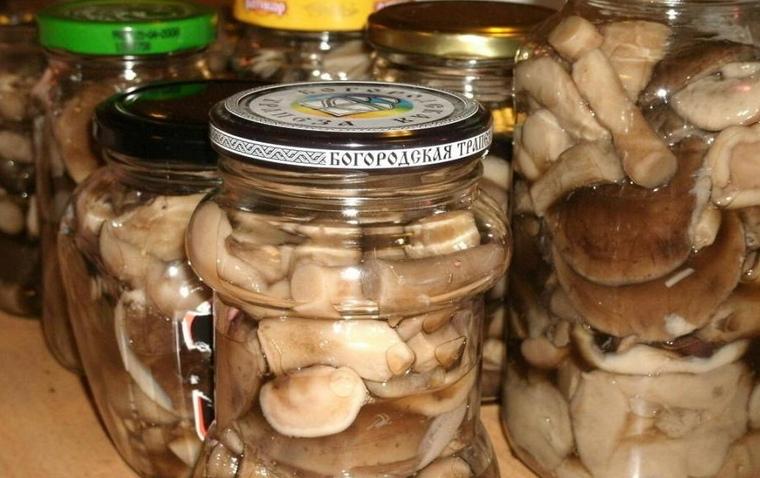Белые грибы на зиму - разные способы вкусной заготовки