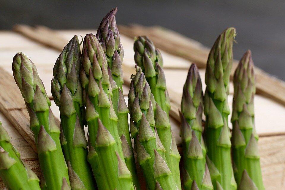 Спаржа царская: описание сорта с фото, особенности выращивания из семян и делением куста, а также нюансы посадки в открытый грунт и ухода за растением