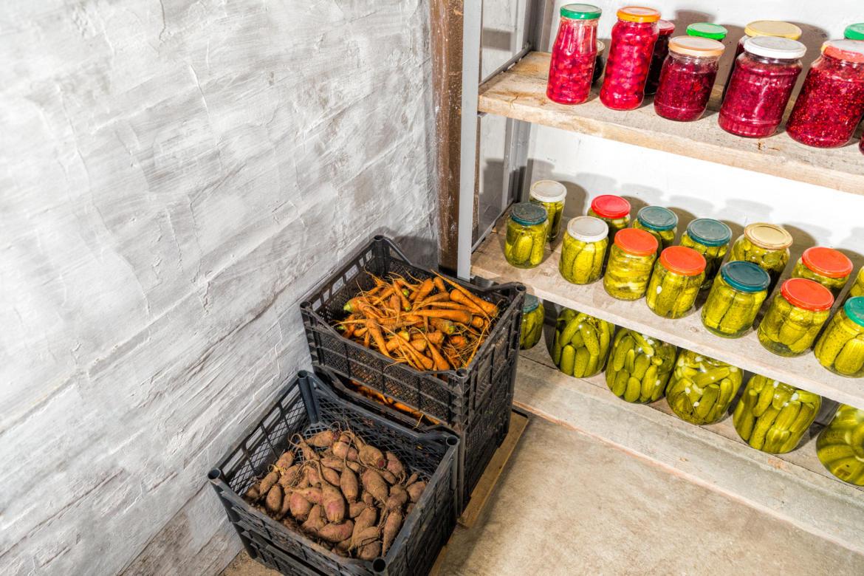 Как сохранить морковь на зиму в домашних условиях в квартире и свеклу: лучшие способы, где правильно держать корнеплод, чтобы не завял как можно дольше selo.guru — интернет портал о сельском хозяйстве