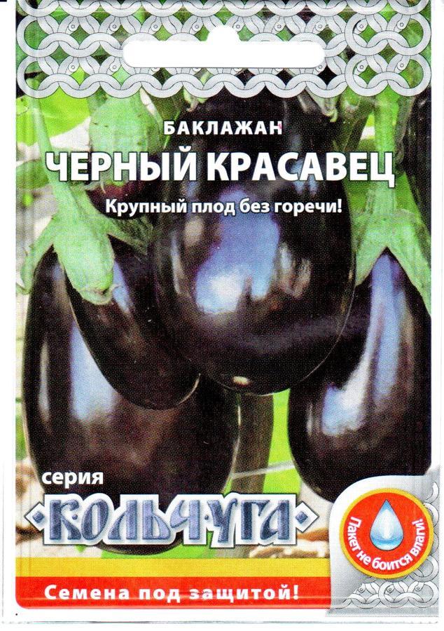 Баклажан черный красавец: характеристика сорта и 5 этапов выращивания