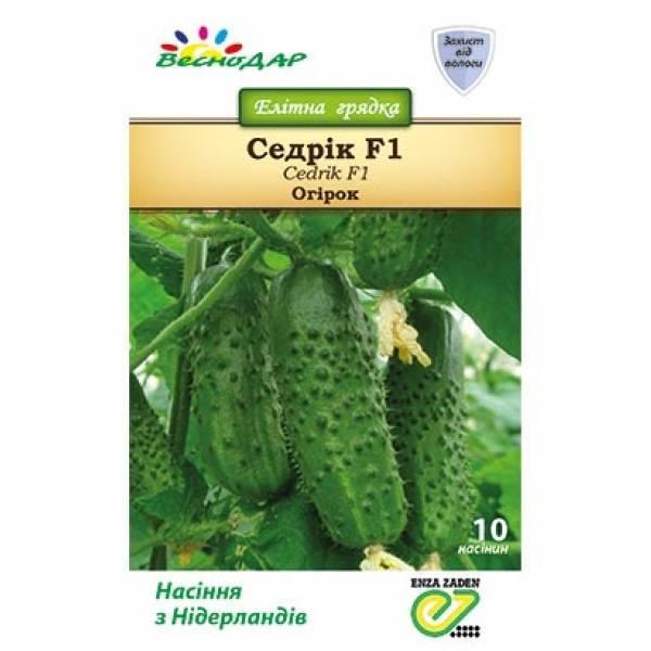 Огурец седрик (f1): описание гибрида, инструкция по его выращиванию, преимущества и недостатки