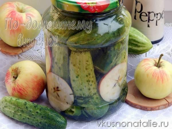 Огурцы с яблоками на зиму: рецепты приготовления, инструкция по закатке и советы по хранению