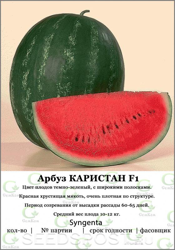 Арбуз каристан (f1): обзор гибридного сорта, его преимущества и недостатки, особенности выращивания