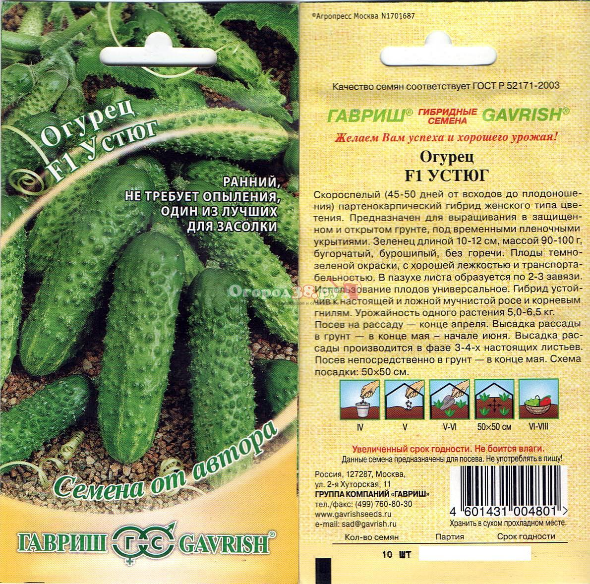 Огурцы корнишоны - лучшие сорта, уход и выращивание