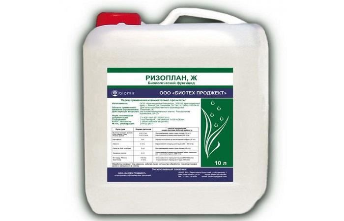 Кораген: инструкция по применению инсектицида, дозировка и аналоги